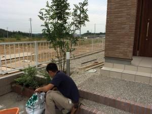 外構工事の植栽